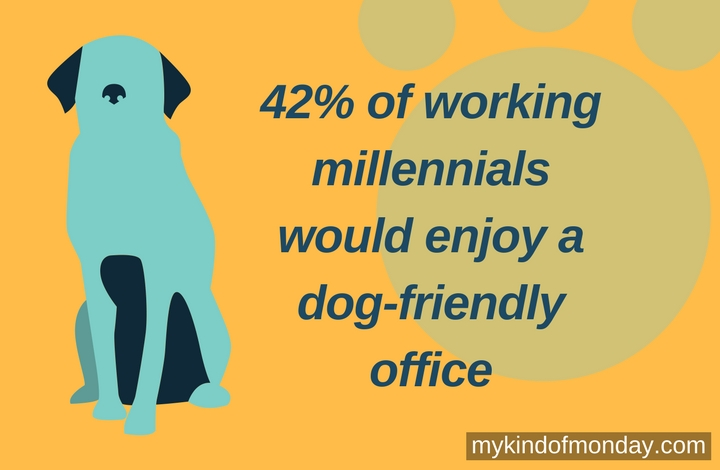 42% of working millennials would enjoy a dog-friendly office