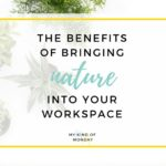 Why Your Office Needs More Natural Elements